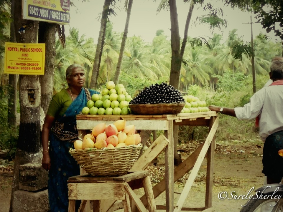 South India Tamil Nadu Pollachi Tamil Nadu India